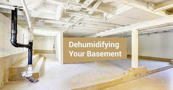 Dehumidifying Your Basement