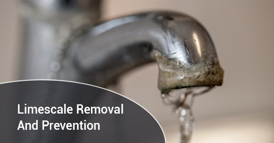 Limescale Removal And Prevention