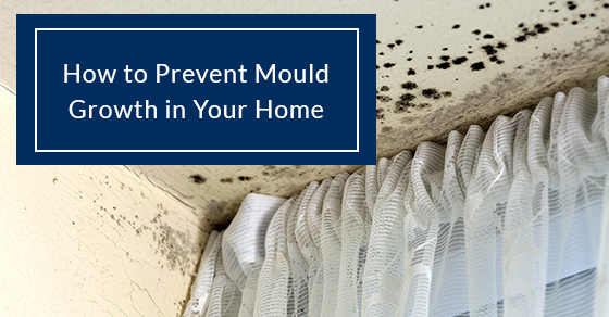 How to prevent mould growth in your home