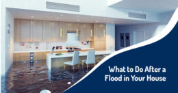 What to Do After a Flood in Your House